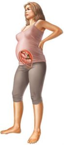 29 неделя беременности: развитие плода